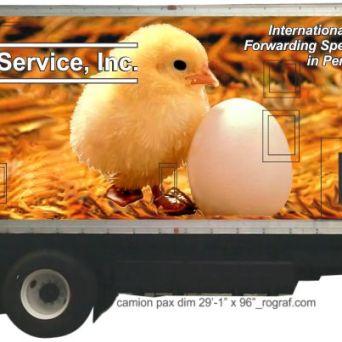 camion pax dim 28f - 1inch. x 96 inch. _rograf